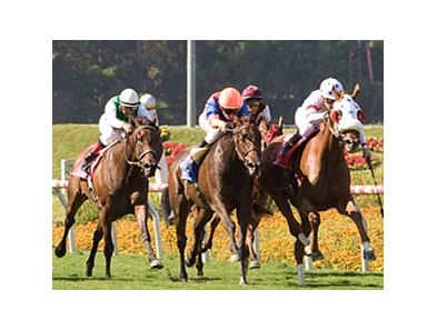 Satan's Circus (center) finished 2nd in her first U.S. start in the American Oaks.