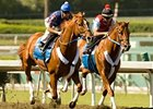 "Curlin, at left, works with stablemate Hawaii Calls between races Oct. 13 at Santa Anita. <br><a target=""blank"" href=""http://www.bloodhorse.com/horse-racing/photo-store?ref=http%3A%2F%2Fpictopia.com%2Fperl%2Fgal%3Fprovider_id%3D368%26ptp_photo_id%3D6308537%0D%0A%26ref%3Dstory"">Order This Photo</a>"