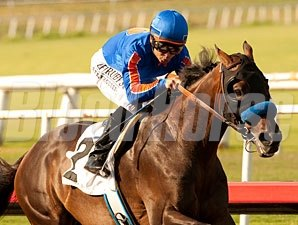 Game On Dude wins the 2013 Hollywood Gold Cup.