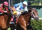 "Interactif (center) takes the National Museum of Racing Hall of Fame Stakes narrowly over Grand Rapport (left) and Krypton. <br><a target=""blank"" href=""http://www.bloodhorse.com/horse-racing/photo-store?ref=http%3A%2F%2Fpictopia.com%2Fperl%2Fgal%3Fprovider_id%3D368%26ptp_photo_id%3D9142495%26ref%3Dstory"">Order This Photo</a>"
