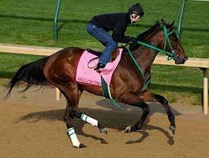 Daily Oaks Notes: April 28