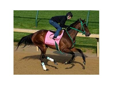 "Absolutely Cindy at Churchill Downs.<br><a target=""blank"" href=""http://www.bloodhorse.com/horse-racing/photo-store?ref=http%3A%2F%2Fpictopia.com%2Fperl%2Fgal%3Fprovider_id%3D368%26ptp_photo_id%3D4335630%26ref%3Dstory"">Order This Photo</a>"