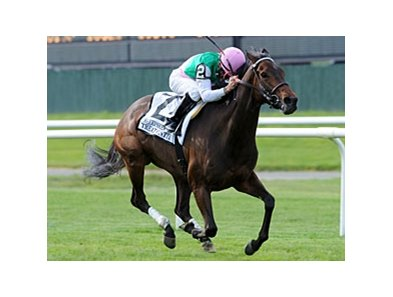 "Treat Gently is the 123-pound high weight in the Robert G. Dick Memorial Stakes.<br><a target=""blank"" href=""http://www.bloodhorse.com/horse-racing/photo-store?ref=http%3A%2F%2Fpictopia.com%2Fperl%2Fgal%3Fprovider_id%3D368%26ptp_photo_id%3D8977175%26ref%3Dstory"">Order This Photo</a>"