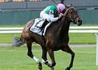 "Treat Gently and Kent Desormeaux sweep to the win in the Sheepshead Bay Stakes.<br><a target=""blank"" href=""http://www.bloodhorse.com/horse-racing/photo-store?ref=http%3A%2F%2Fpictopia.com%2Fperl%2Fgal%3Fprovider_id%3D368%26ptp_photo_id%3D8977175%26ref%3Dstory"">Order This Photo</a>"