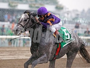 Flashpoint wins the 2011 Jersey Shore Stakes.