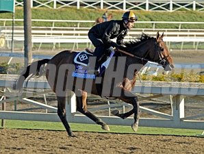 Summit County - Breeders' Cup 2012