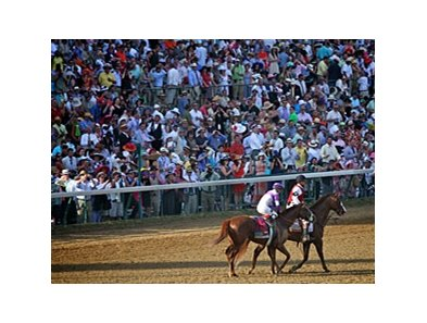 I'll Have Another and jockey Mario Gutierrez head towards the winner's circle following their Kentucky Derby victory.