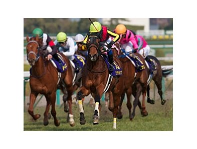 Gentildonna wins the JRA Oka Sho in Japan.