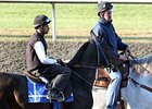 Harmonious at Keeneland on October 29.