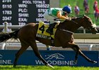 Barefoot Lady won the Canadian Stakes at Woodbine on Sept. 16.