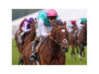 "Frankel bids to become the first dual winner of the QIPCO Sussex Stakes Aug. 1.<br><a target=""blank"" href=""http://photos.bloodhorse.com/AtTheRaces-1/at-the-races-2012/22274956_jFd5jM#!i=1916873326&k=njj8K4S"">Order This Photo</a>"