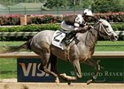 Hightap draws off to victory in the Dogwood.
