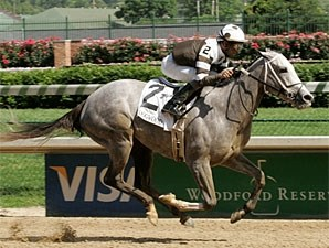 Hightap wins the 2009 Dogwood