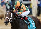 "Believe You Can makes her 2013 debut in the Tiffany Lass Stakes.<br><a target=""blank"" href=""http://photos.bloodhorse.com/AtTheRaces-1/at-the-races-2012/22274956_jFd5jM#!i=1829116649&k=35CDG5n"">Order This Photo</a>"