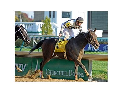 "Iroquois winner Motor City<br><a target=""blank"" href=""http://www.bloodhorse.com/horse-racing/photo-store?ref=http%3A%2F%2Fpictopia.com%2Fperl%2Fgal%3Fprovider_id%3D368%26ptp_photo_id%3D9723214%26ref%3Dstory"">Order This Photo</a>"