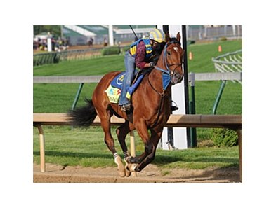 "Vyjack went three furlongs in :37 at Churchill Downs May 2.<br><a target=""blank"" href=""http://photos.bloodhorse.com/TripleCrown/2013-Triple-Crown/Kentucky-Derby-Workouts/29026796_jvcnn8#!i=2489607218&k=WmkBf6d"">Order This Photo</a>"