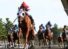 Groupie Doll won the 2012 Thoroughbred Club of America Stakes by 6 1/2 lengths.