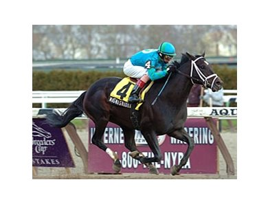 "Magna Graduate, shown winning the 2007 Excelsior, looks to break a seven-racing losing streak in this year's version.<br><a target=""blank"" href=""http://www.bloodhorse.com/horse-racing/photo-store?ref=http%3A%2F%2Fpictopia.com%2Fperl%2Fgal%3Fprovider_id%3D368%26ptp_photo_id%3D979269%26ref%3Dstory"">Order This Photo</a>"
