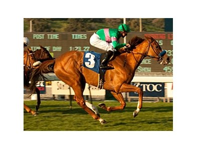 "Cozi Rosie won the Buena Vista Handicap on February 21.<br><a target=""blank"" href=""http://www.bloodhorse.com/horse-racing/photo-store?ref=http%3A%2F%2Fpictopia.com%2Fperl%2Fgal%3Fprovider_id%3D368%26ptp_photo_id%3D9416456%26ref%3Dstory"">Order This Photo</a>"