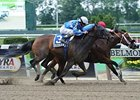 C C's Pal Tops 7-Horse Bed O' Roses Field