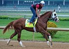 "Will Take Charge went five furlongs in 1:01 flat under exercise rider Rudy Quevedo.<br><a target=""blank"" href=""http://photos.bloodhorse.com/TripleCrown/2013-Triple-Crown/Kentucky-Derby-Workouts/29026796_jvcnn8#!i=2483611015&k=QV42pDR"">Order This Photo</a>"