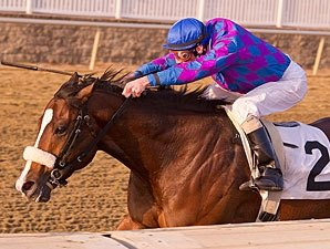 Whiskey Romeo Goes for Grade in Jersey Shore