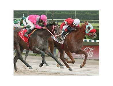 D'nied Permission takes the Affirmed Division of the Florida Stallion Stakes.