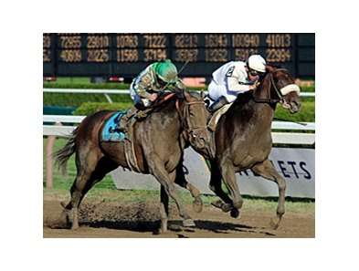 Colonel John (right) takes the Travers by a nose over Mambo in Seattle.