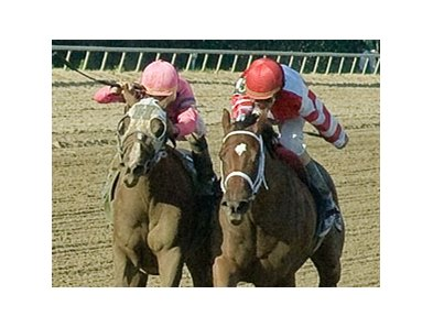 Blind Luck (left) and Havre de Grace could meet again in the Personal Ensign.