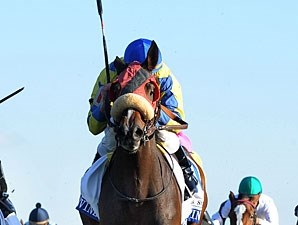 Daisy Devine wins the 2011 Valley View.