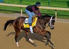 Uncle Mo