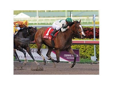 "Pomeroys Pistol charges home in the Sugar Swirl at Gulfstream.<br><a target=""blank"" href=""http://www.bloodhorse.com/horse-racing/photo-store?ref=http%3A%2F%2Fpictopia.com%2Fperl%2Fgal%3Fprovider_id%3D368%26ptp_photo_id%3D9773228%26ref%3Dstory"">Order This Photo</a>"