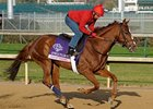 "Dayatthespa at Churchill Downs on November 1.<br><a target=""blank"" href=""http://www.bloodhorse.com/horse-racing/photo-store?ref=http%3A%2F%2Fpictopia.com%2Fperl%2Fgal%3Fprovider_id%3D368%26ptp_photo_id%3D9725499%26ref%3Dstory"">Order This Photo</a>"