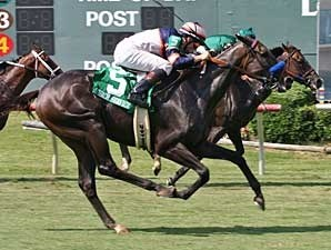 Church Service wins the Dallas Turf Cup Handicap.