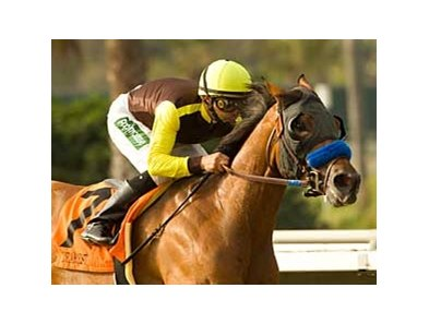 "Dearest Trickski <br><a target=""blank"" href=""http://www.bloodhorse.com/horse-racing/photo-store?ref=http%3A%2F%2Fpictopia.com%2Fperl%2Fgal%3Fprovider_id%3D368%26ptp_photo_id%3D5654908%0D%0A%26ref%3Dstory"">Order This Photo</a>"