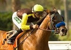 "Dearest Trickski won the Rancho Bernando (gr. III) in gate-to-wire fashion. <br><a target=""blank"" href=""http://www.bloodhorse.com/horse-racing/photo-store?ref=http%3A%2F%2Fpictopia.com%2Fperl%2Fgal%3Fprovider_id%3D368%26ptp_photo_id%3D5654908%0D%0A%26ref%3Dstory"">Order This Photo</a>"