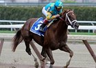 Eskendereya won the 2010 Wood Memorial.