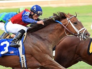 Smiling Tiger wins the 2011 Count Fleet Handicap.