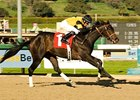 "On March 29, San Rafael winner El Gato Malo had his final major work before the Santa Anita Derby.<br><a target=""blank"" href=""http://www.bloodhorse.com/horse-racing/photo-store?ref=http%3A%2F%2Fpictopia.com%2Fperl%2Fgal%3Fprovider_id%3D368%26ptp_photo_id%3D3277578%26ref%3Dstory"">Order This Photo</a>"