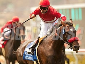 Acclamation wins the 2012 Eddie Read.