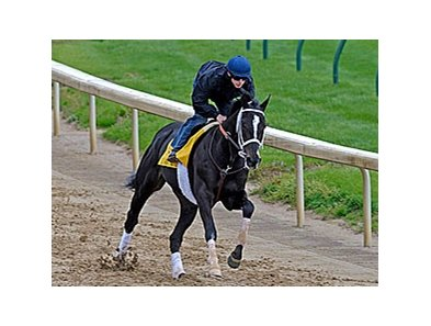 "I Want Revenge works at Churchill Downs on April 14, 2009 under Joe Talamo.<br><a target=""blank"" href=""http://www.bloodhorse.com/horse-racing/photo-store?ref=http%3A%2F%2Fpictopia.com%2Fperl%2Fgal%3Fprovider_id%3D368%26ptp_photo_id%3D8006146%26ref%3Dstory"">Order This Photo</a>"