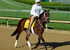 Mark Valeski