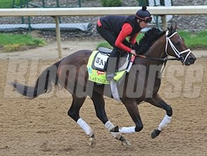Palace Malice - Churchill Downs, April 29, 2013.
