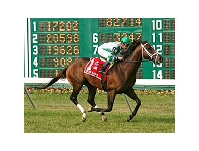 Turbo Compressor won the United Nations at Monmouth Park July 7.