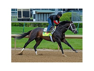 Verrazano working towards the Kentucky Derby at Churchill Downs April 27.
