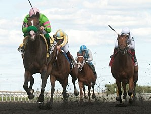 Skylander Girl wins the 2013 Ontario Debutante Stakes.