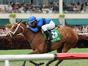 Regalo Mia wins the 2013 Florida Sunshine Millions Filly and Mare Turf.