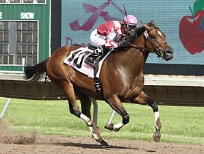 Starlite Starbrite wins the 2012 Hoist Her Flag Stakes.
