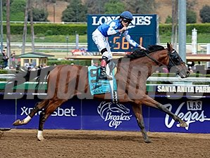 Cary Street wins the 2014 Las Vegas Marathon Stakes.