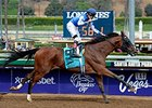 "Cary Street wins the 2014 Las Vegas Marathon Stakes. <br><a target=""blank"" href=""http://photos.bloodhorse.com/AtTheRaces-1/At-the-Races-2014/"">Order This Photo</a>"